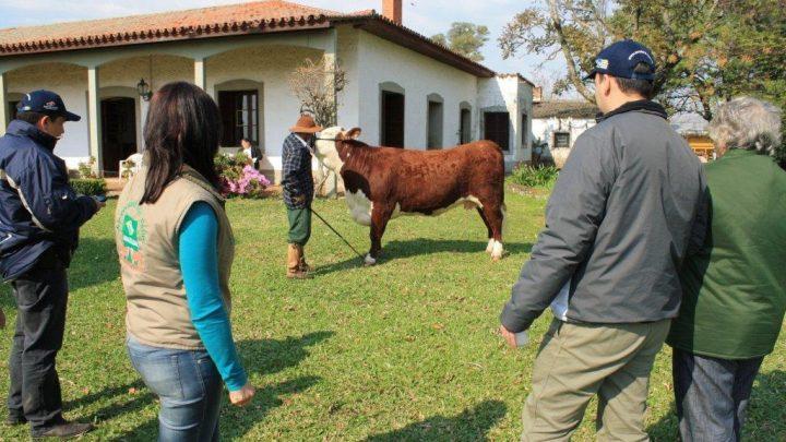 ASP recebe visita de Colombianos