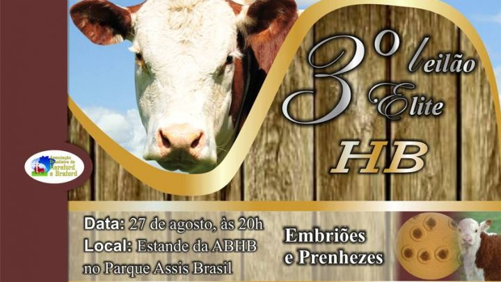 Genética Campeã Nacional irá a leilão na Expointer 2013