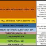 Tabela de Critérios Avaliados na PAC