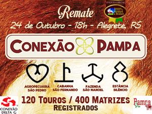 ASP e mais 3 consagrados criatórios promovem Remate Conexão Pampa