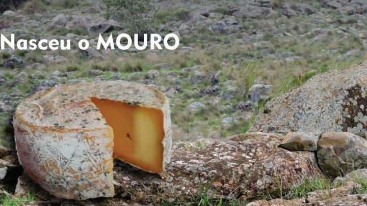 Conheça o MOURO, o novo queijo Da Rose