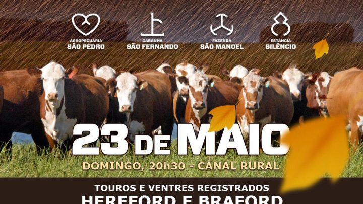 É nesse 23/05 (domingo) o Conexão Pampa Virtual de Outono